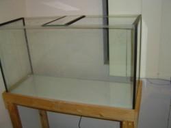 fish setup tank
